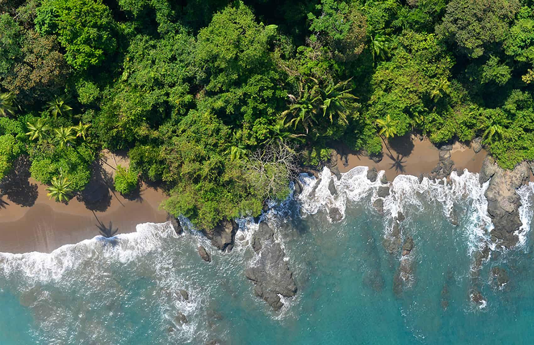 Drake, Corcovado. Costa Rica