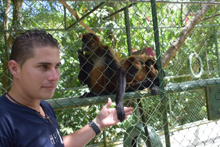"""Carlos Barrantes holds the hand of a spider monkey he calls his """"princess."""""""