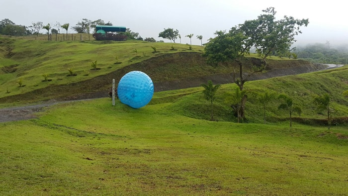 Here's something you don't see every day: A giant blue ball rolling down a curvy course with two people inside laughing.