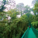Monteverde: You can get there from here, but you'll need some pura vida
