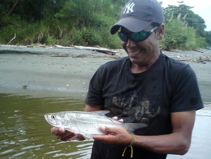 Saul Porras with a clue that tarpon may be breeding in the Pacific.
