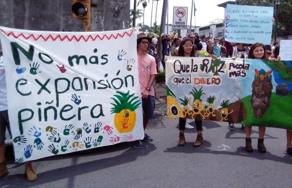 Demonstration against pineapple expansion. May 15, 2017.