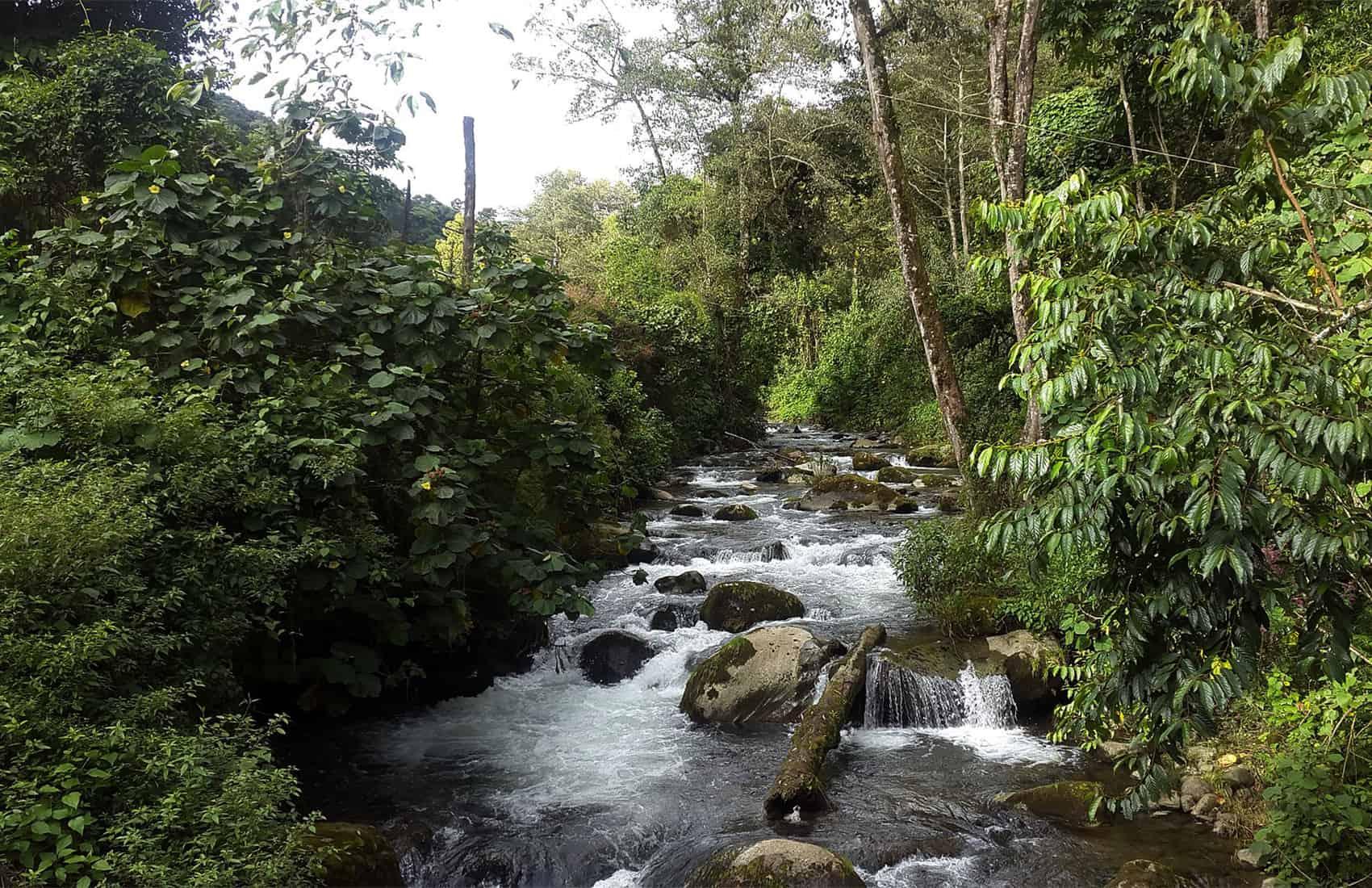 Rio Savegre