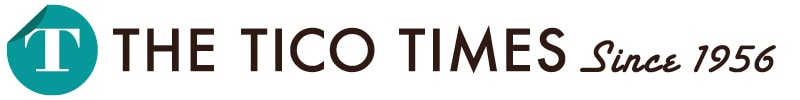 Eleven Sea Turtles Saved from Slaughter