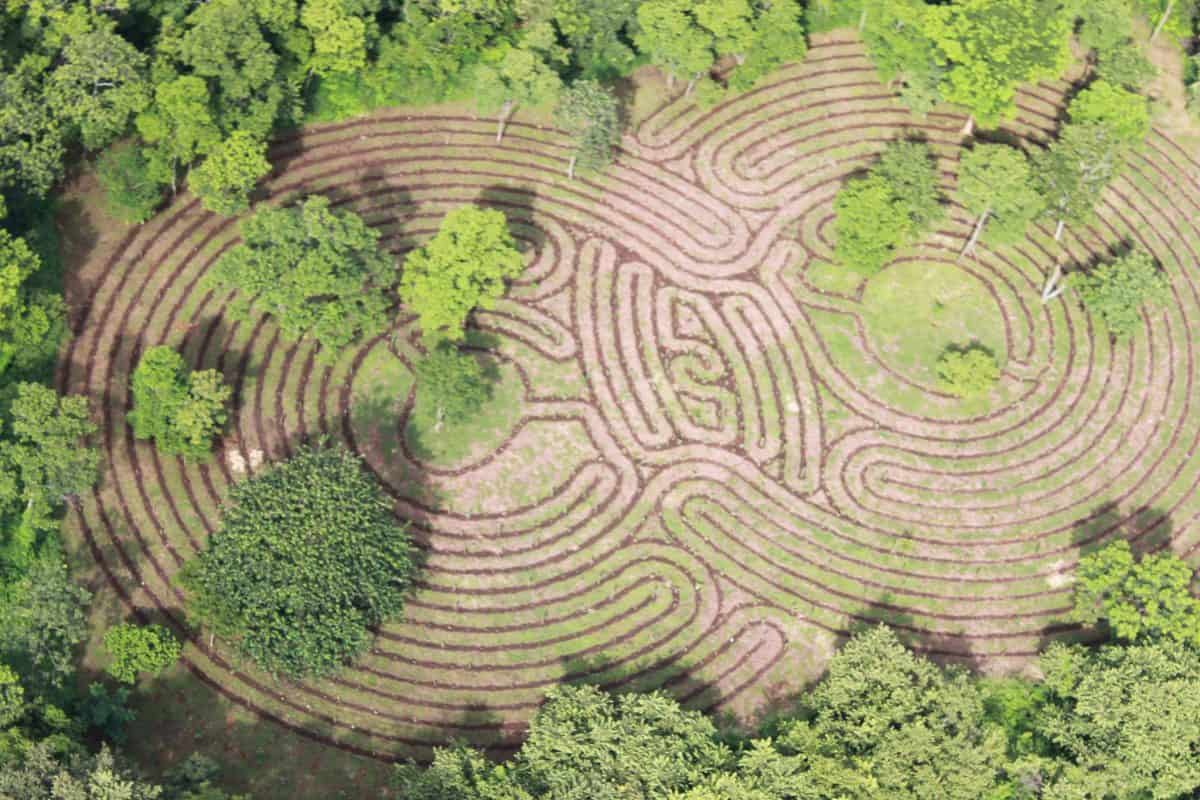 Tamarindo Labyrinth