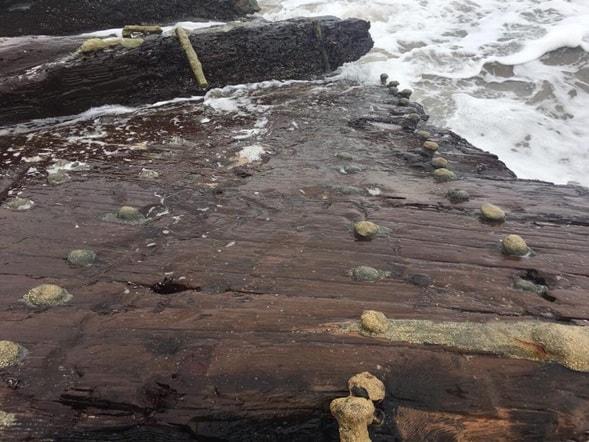 Shipwrecked hull in Punta Uva, Costa Rica
